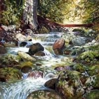 Nelson Creek I