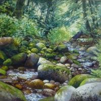 Mossy Creekbed